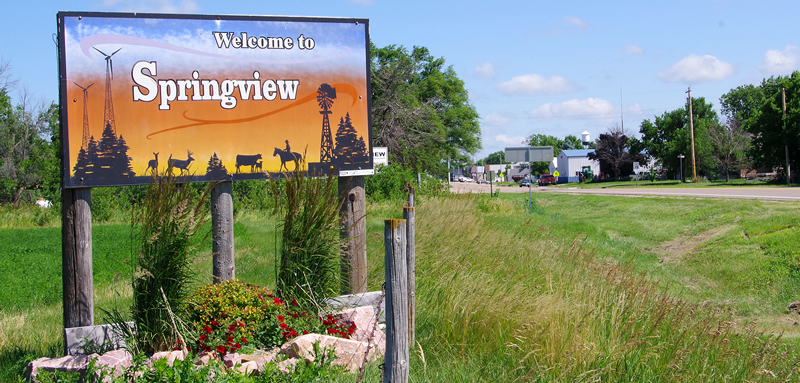 Springview City Sign